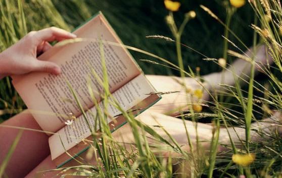 cropped-flower-reading.jpg