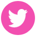 c5c0c-pink_social2bmedia_twitter