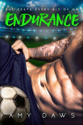 www.dgbookblog.com:endurance:amydaws:cover