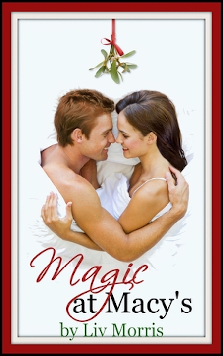 www.dgbookblog.com:magic.at.macy's.liv.morris.cover