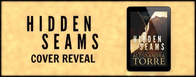 www.dgbookblog.com:Hidden Seams CR banner