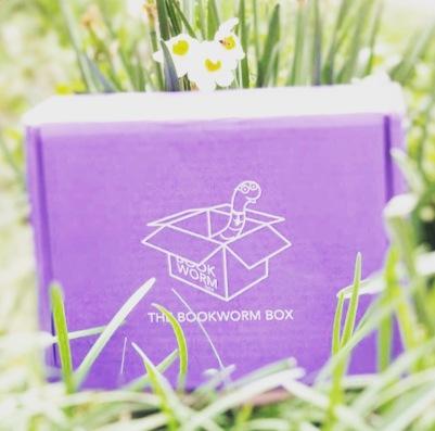 www.dgbookblog.com:bookworm.box.giveaway.insta