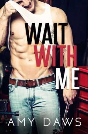 www.dgbookblog.com:Wait With Me by Amy Daws.cover