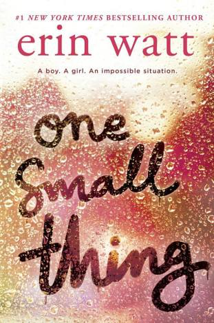 www.dgbookblog.com:one.small.thing:erin.watt.cover