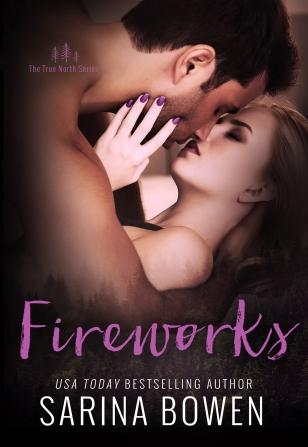 www.dgbookblog.com:fireworks.bowen.cover.JPG