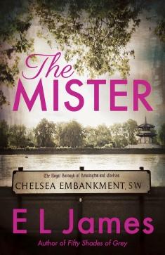 www.dgbookblog.com:.the.mister.cover