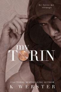 www.dgbookblog.com:my.torin.k.webster.cover