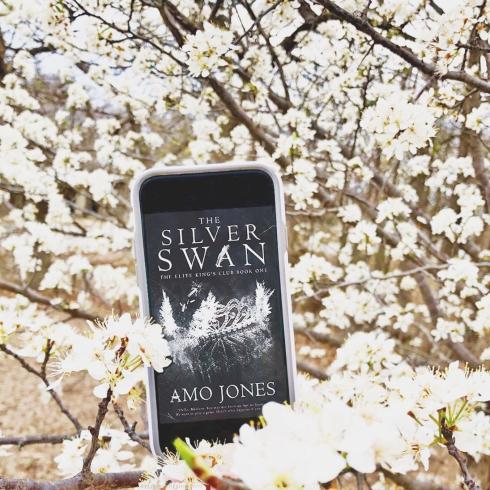 www.dgbookblog.com:silver.swan.amo.jones.insta1