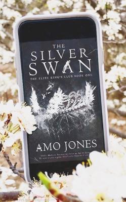 www.dgbookblog.com:silver.swan.amo.jones.insta2