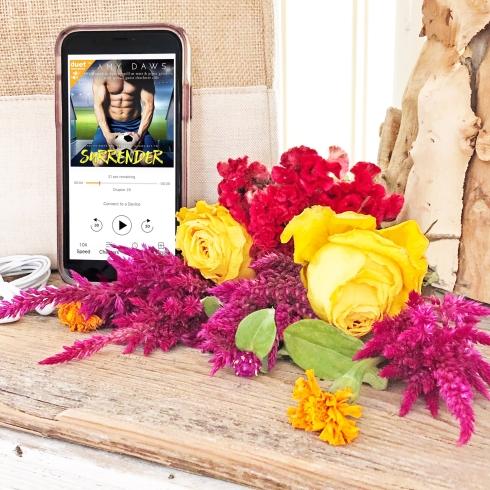 www.dgbookblog.com:surrender.amy.daws.insta1