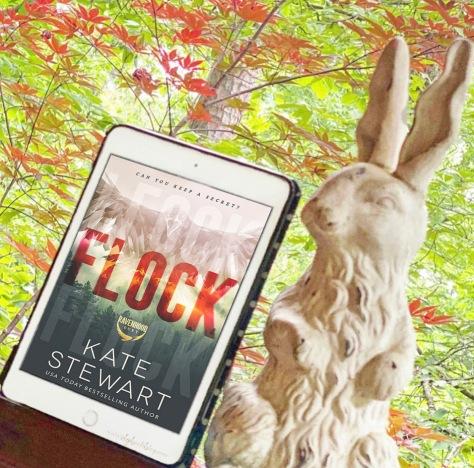 www.DGBookBlog.com:Flock.kate.steart.insta